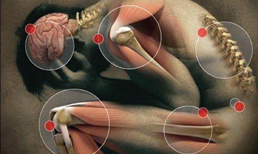 Должен ли я получить второе мнение по поводу ортопедической боли?
