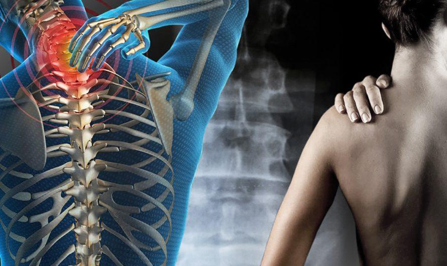 Навигация в спине — часть 2: кто лечит боль в спине?